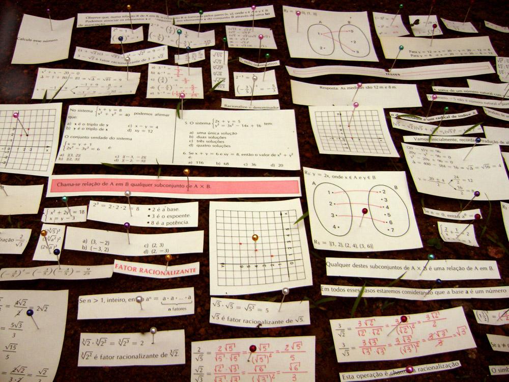Fator Racionalizante, 2009 - alfinetes, terra e recortes de livro de matemática, dimensões variáveis.